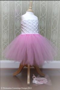 Tutu Tube Dress