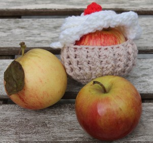 Magazine Apple Cozy